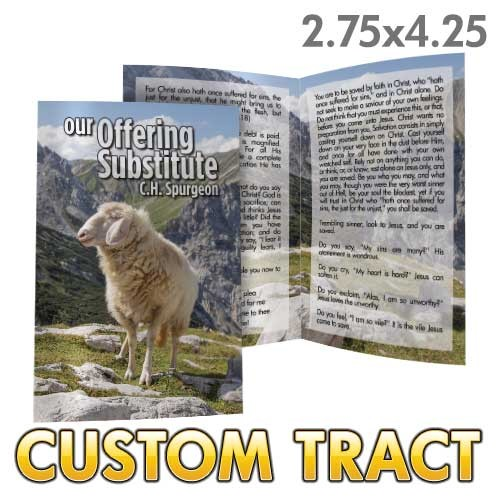 Custom 'Our Suffering Substitute' Tract (Bi-Fold)